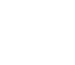 The Wedding Filmer - Logo