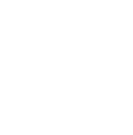 The Wedding Filmer - workshop type symbol